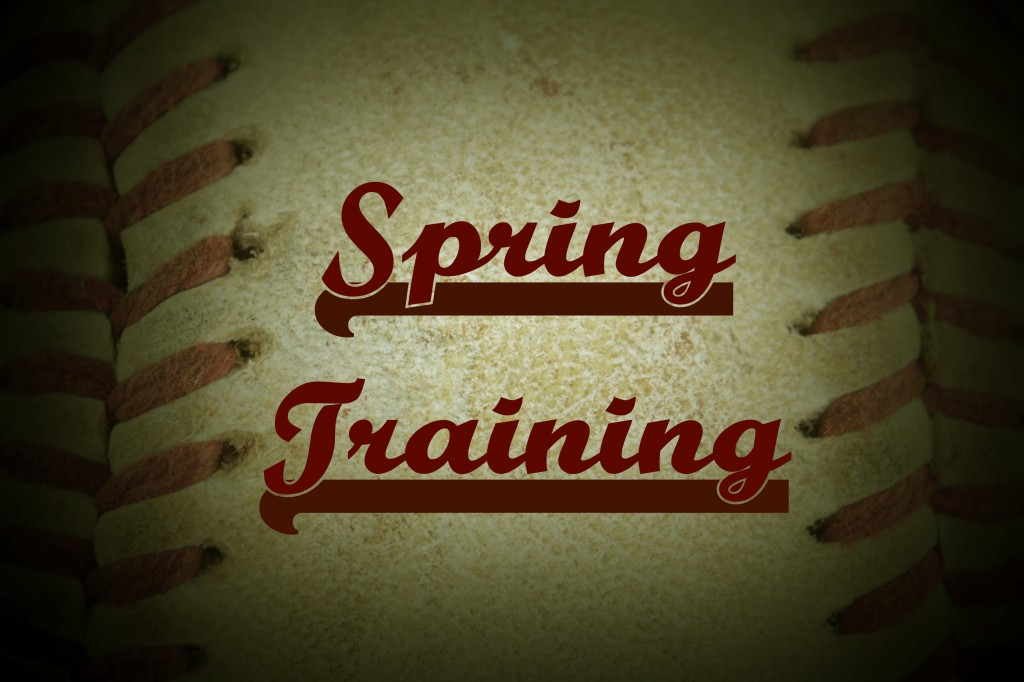 Hussain al Nowais Provides Tips for Traveling to Florida for Spring Training